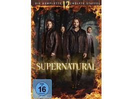 Supernatural - Staffel 12 [6 DVDs]